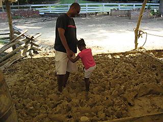 Mashing mud for bricks
