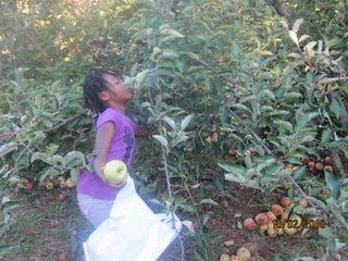 Fall 2010 026